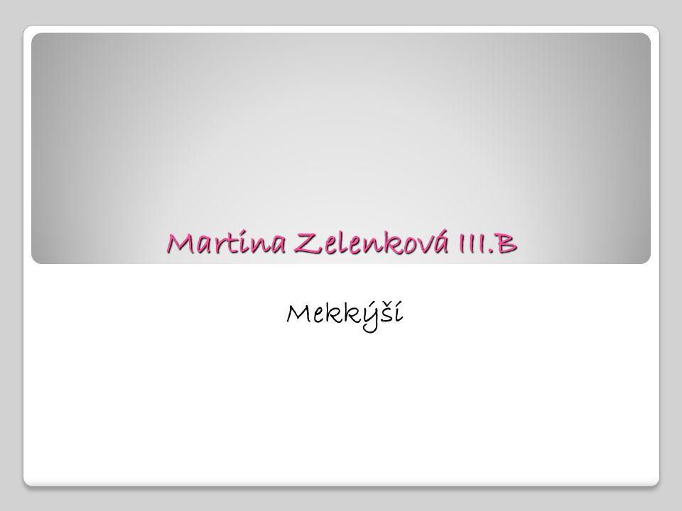 Martina Zelenková III.B Mekkýší