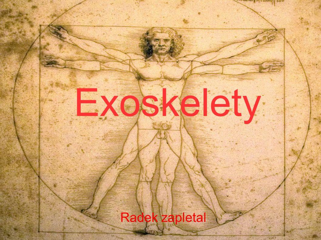 Exoskelety Radek zapletal