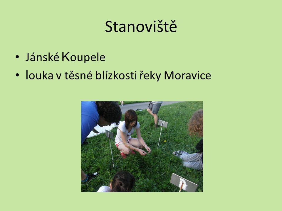Stanoviště Jánské K oupele l ouka v těsné blízkosti řeky Moravice