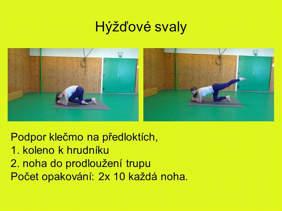 Hýžďové svaly Podpor klečmo na předloktích, 1. koleno k hrudníku 2. noha do prodloužení trupu Počet opakování: 2x 10 každá noha.