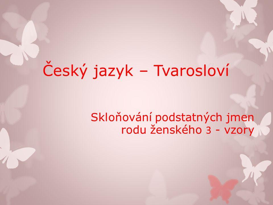 Číslo v digitálním archivu školy VY_32_INOVACE_TVAR_13 Sada DUMTvarosloví Předmět Český jazyk Název materiáluSkloňování podstatných jmen rodu ženského