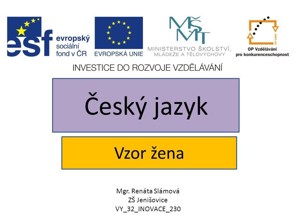 Vzor žena Český jazyk Mgr. Renáta Slámová ZŠ Jenišovice VY_32_INOVACE_230