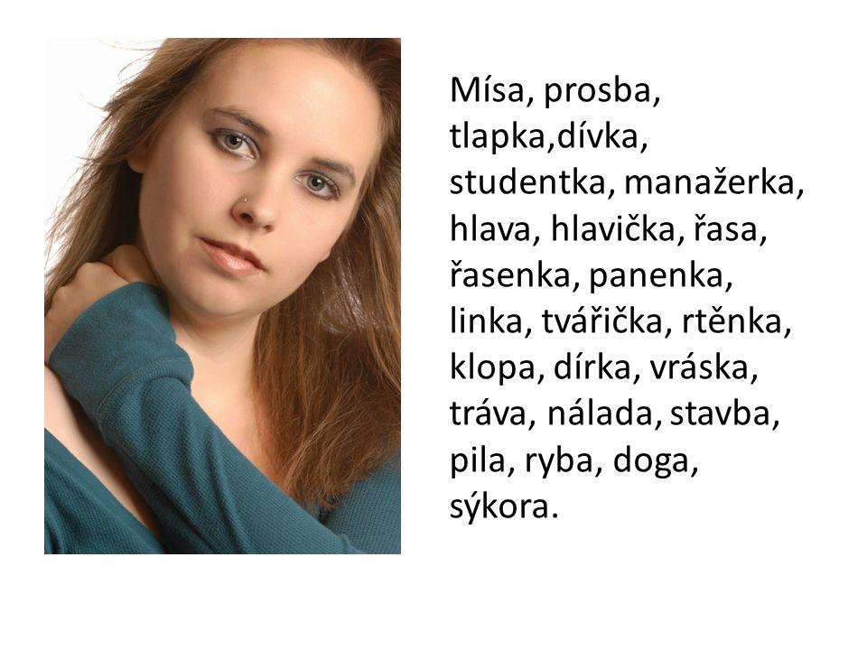 Mísa, prosba, tlapka,dívka, studentka, manažerka, hlava, hlavička, řasa, řasenka, panenka, linka, tvářička, rtěnka, klopa, dírka, vráska, tráva, nálad