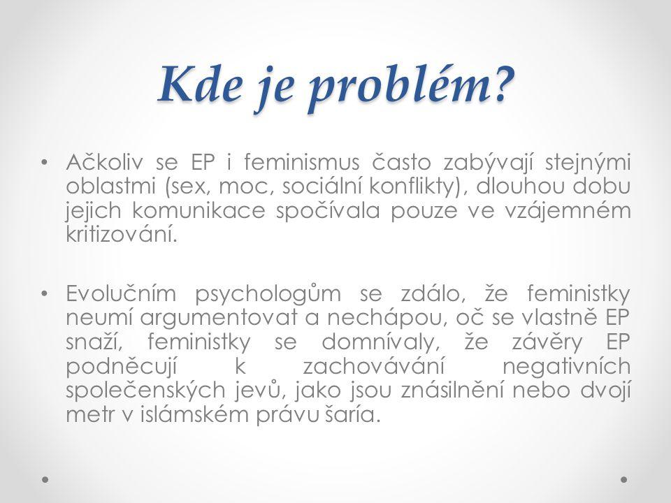 Kde je problém? Ačkoliv se EP i feminismus často zabývají stejnými oblastmi (sex, moc, sociální konflikty), dlouhou dobu jejich komunikace spočívala p