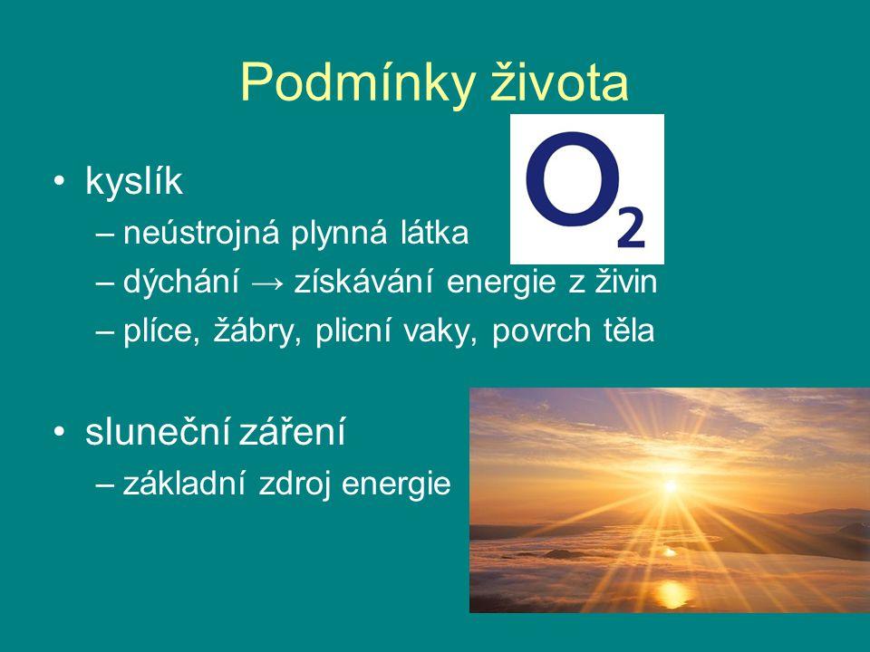Podmínky života kyslík –neústrojná plynná látka –dýchání → získávání energie z živin –plíce, žábry, plicní vaky, povrch těla sluneční záření –základní