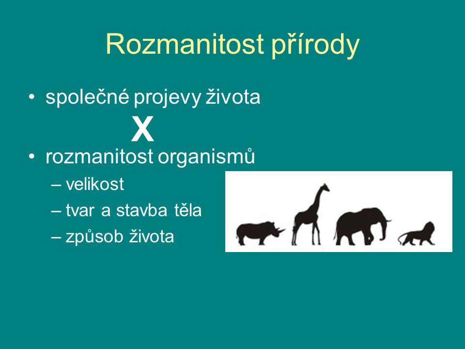 Rozmanitost přírody společné projevy života rozmanitost organismů –velikost –tvar a stavba těla –způsob života X