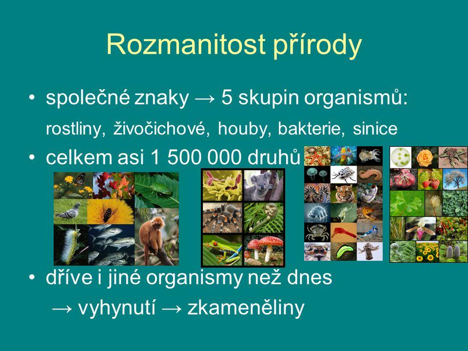 Rozmanitost přírody společné znaky → 5 skupin organismů: rostliny, živočichové, houby, bakterie, sinice celkem asi 1 500 000 druhů dříve i jiné organi