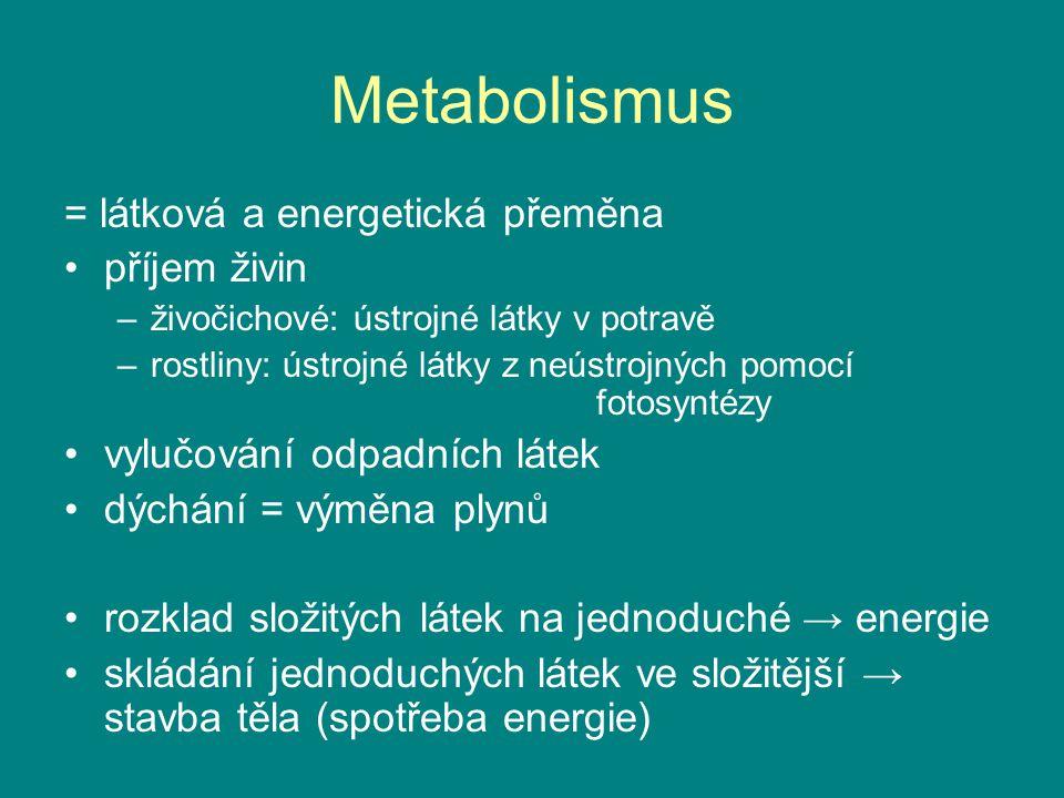 Metabolismus = látková a energetická přeměna příjem živin –živočichové: ústrojné látky v potravě –rostliny: ústrojné látky z neústrojných pomocí fotos