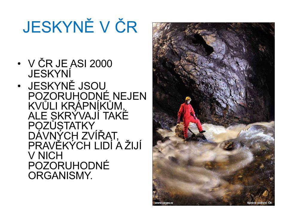 JESKYNĚ V ČR V ČR JE ASI 2000 JESKYNÍ JESKYNĚ JSOU POZORUHODNÉ NEJEN KVŮLI KRÁPNÍKŮM, ALE SKRÝVAJÍ TAKÉ POZŮSTATKY DÁVNÝCH ZVÍŘAT, PRAVĚKÝCH LIDÍ A ŽIJÍ V NICH POZORUHODNÉ ORGANISMY.