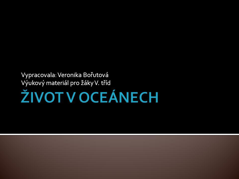  Mořští predátoři  Obývají většinu rozlohy moří a oceánů  Existuje asi 300 druh  Nejmenší žralok máčka skvrnitá asi 50 cm, největší žralok obrovský dosahuje 18 m a váží až 20 tun  Smysly: a) zrak - vidí i ve tmě b) sluch - zaznamenávají zvuky, které člověk neslyší c) čich – schopnost ucítit krev na několik set metrů  Zrození: a) vejcorodí – kladou vejce do vody b) vejcoživorodí – vajíčka se vyvíjí v břiše matky, vylíhnou se mláďata a teprve pak opouští její tělo c) živorodí – mláďata se vyvíjí v těle matky, která je pak porodí