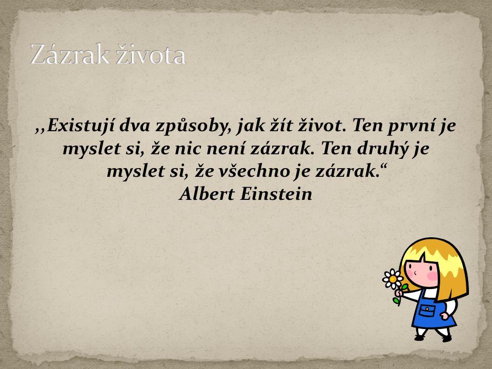 """,,Existují dva způsoby, jak žít život. Ten první je myslet si, že nic není zázrak. Ten druhý je myslet si, že všechno je zázrak."""" Albert Einstein"""