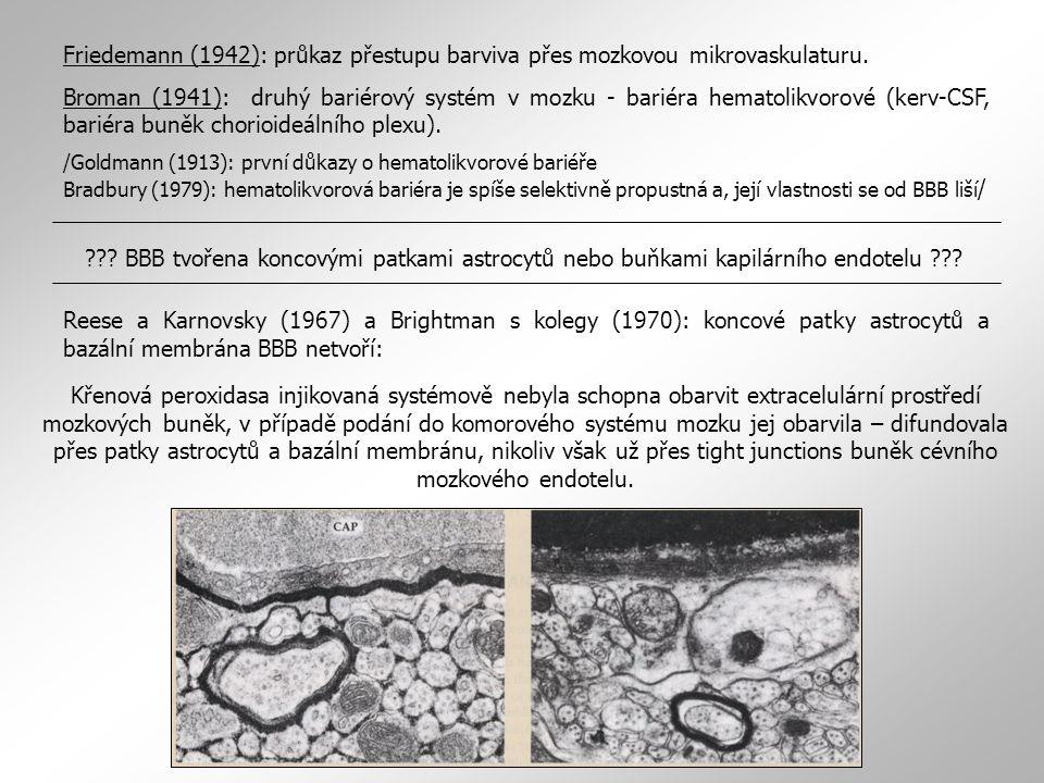 Friedemann (1942): průkaz přestupu barviva přes mozkovou mikrovaskulaturu. Broman (1941): druhý bariérový systém v mozku - bariéra hematolikvorové (ke