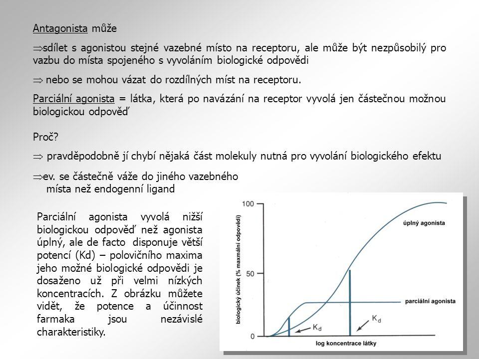 Parciální agonista může disponovat daleko vyšší potencí (vazebnou schopností) než agonista úplný.