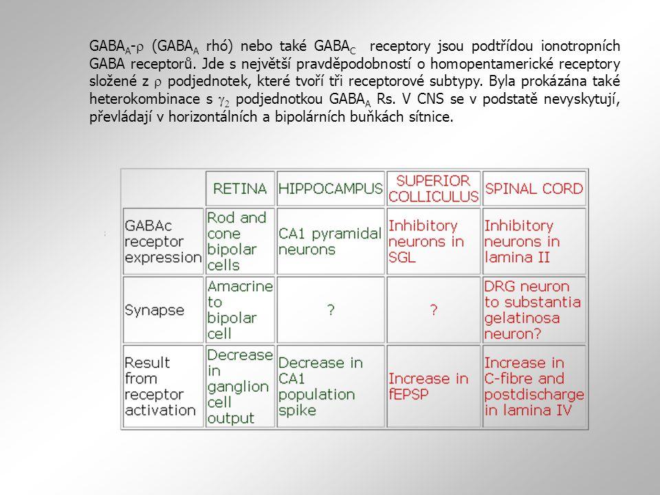 GABA A -  (GABA A rhó) nebo také GABA C receptory jsou podtřídou ionotropních GABA receptorů. Jde s největší pravděpodobností o homopentamerické rece