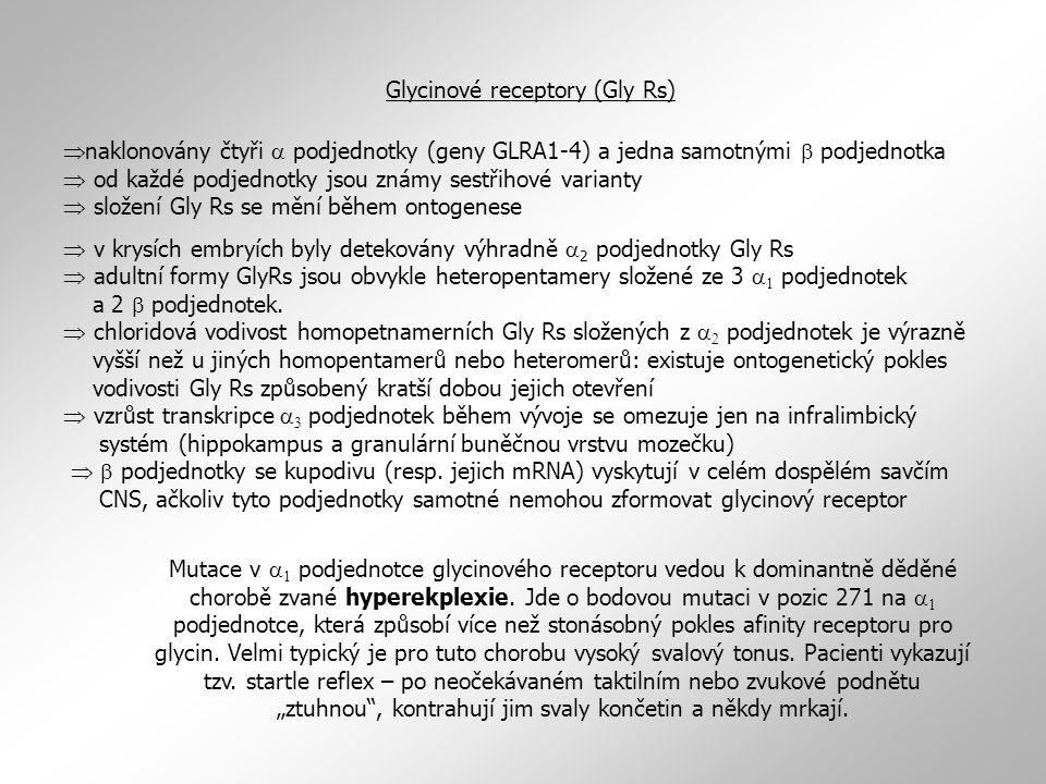  naklonovány čtyři  podjednotky (geny GLRA1-4) a jedna samotnými  podjednotka  od každé podjednotky jsou známy sestřihové varianty  složení Gly R