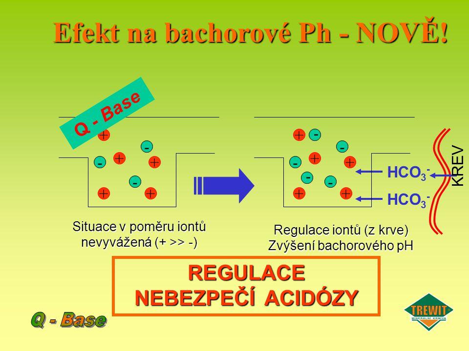 - - - + + + ++ Q - Base HCO 3 - KREV Situace v poměru iontů nevyvážená (+ >> -) Regulace iontů (z krve) Zvýšení bachorového pH REGULACE NEBEZPEČÍ ACID