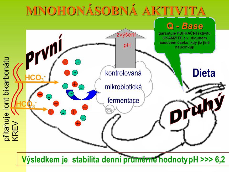 MNOHONÁSOBNÁ AKTIVITA Výsledkem je stabilita denní průměrné hodnoty pH >>> 6,2 Dieta - - - + + + + + - - - - - + + ++ HCO 3 - přitahuje iont bikarboná
