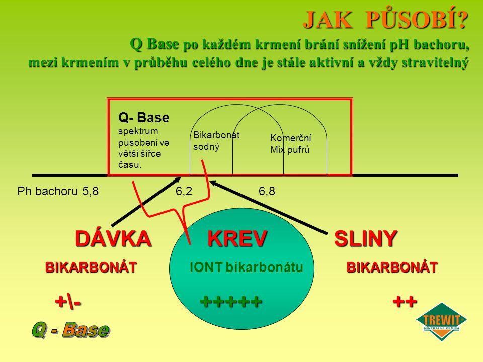JAK PŮSOBÍ? Q Base po každém krmení brání snížení pH bachoru, mezi krmením v průběhu celého dne je stále aktivní a vždy stravitelný Ph bachoru 5,8 6,2