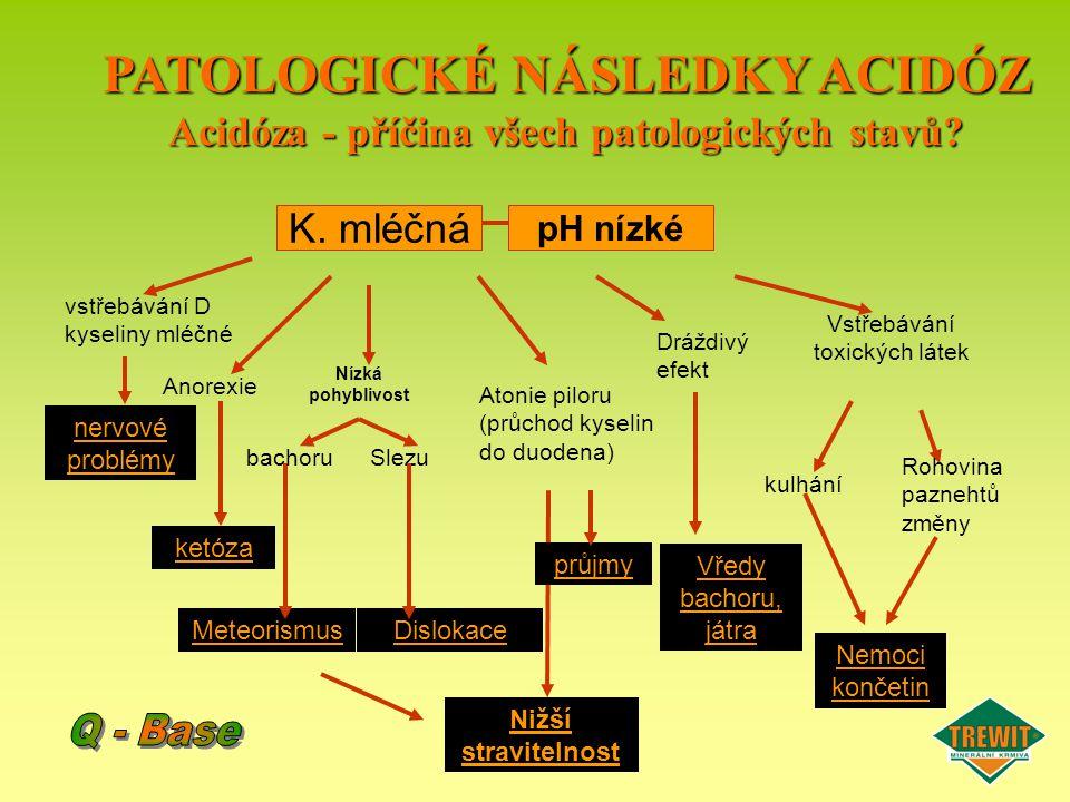 PATOLOGICKÉ NÁSLEDKY ACIDÓZ Acidóza - příčina všech patologických stavů? ketóza nervové problémy Meteorismus Nižší stravitelnost průjmy Vředy bachoru,