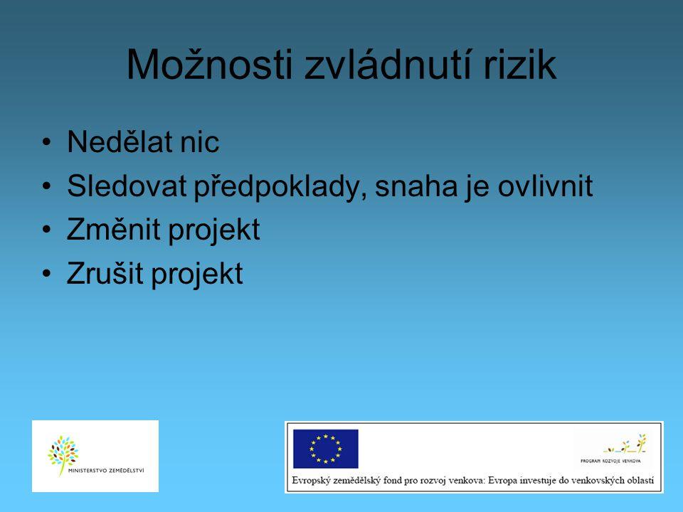 Možnosti zvládnutí rizik Nedělat nic Sledovat předpoklady, snaha je ovlivnit Změnit projekt Zrušit projekt 29