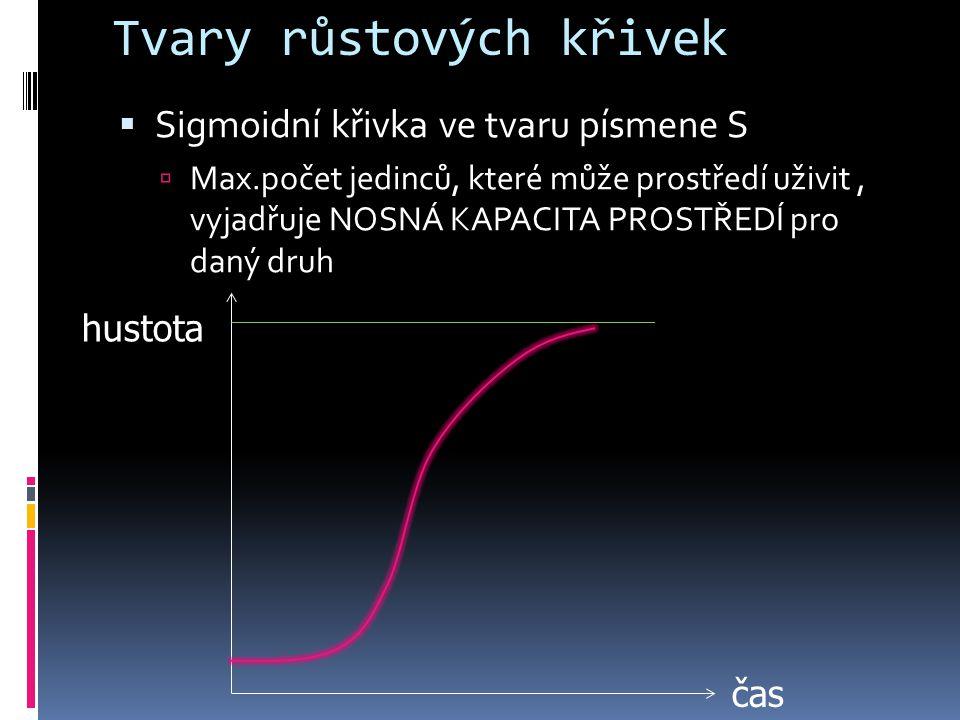 Tvary růstových křivek  Sigmoidní křivka ve tvaru písmene S  Max.počet jedinců, které může prostředí uživit, vyjadřuje NOSNÁ KAPACITA PROSTŘEDÍ pro