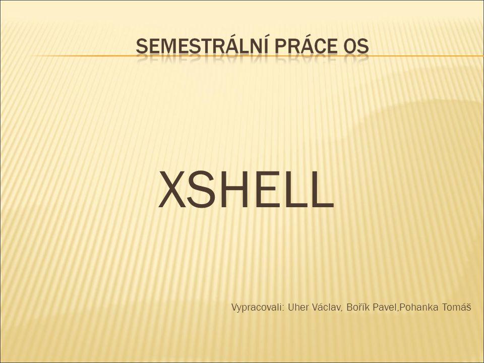  Úkolem semestrální práce je vytvoření Shell pro Unix/Linux  Použili jsme programovací jazyk JAVA