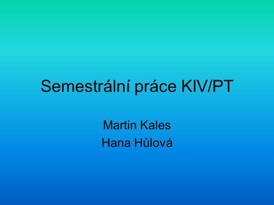 Semestrální práce KIV/PT Martin Kales Hana Hůlová