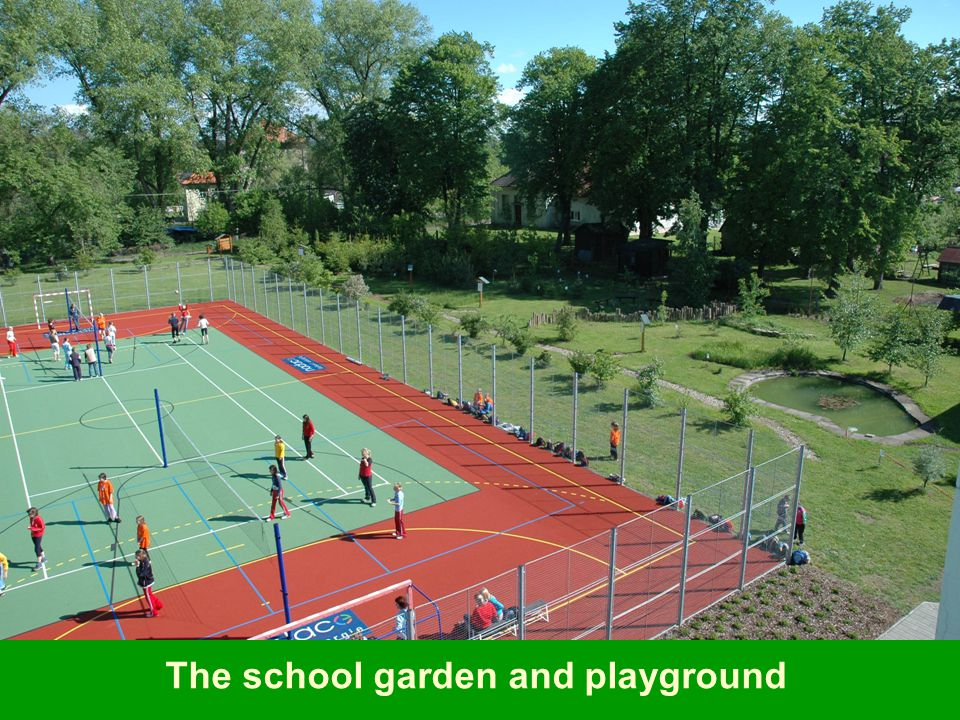 The school garden and playground