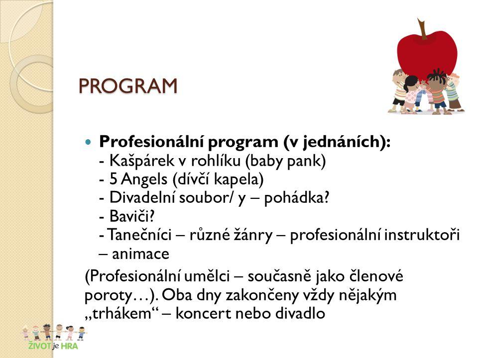 PROGRAM Profesionální program (v jednáních): - Kašpárek v rohlíku (baby pank) - 5 Angels (dívčí kapela) - Divadelní soubor/ y – pohádka.