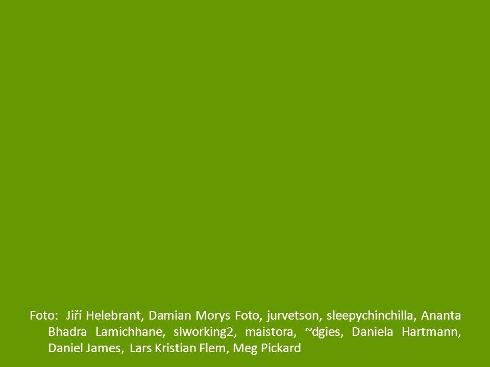 Foto: Jiří Helebrant, Damian Morys Foto, jurvetson, sleepychinchilla, Ananta Bhadra Lamichhane, slworking2, maistora, ~dgies, Daniela Hartmann, Daniel James, Lars Kristian Flem, Meg Pickard
