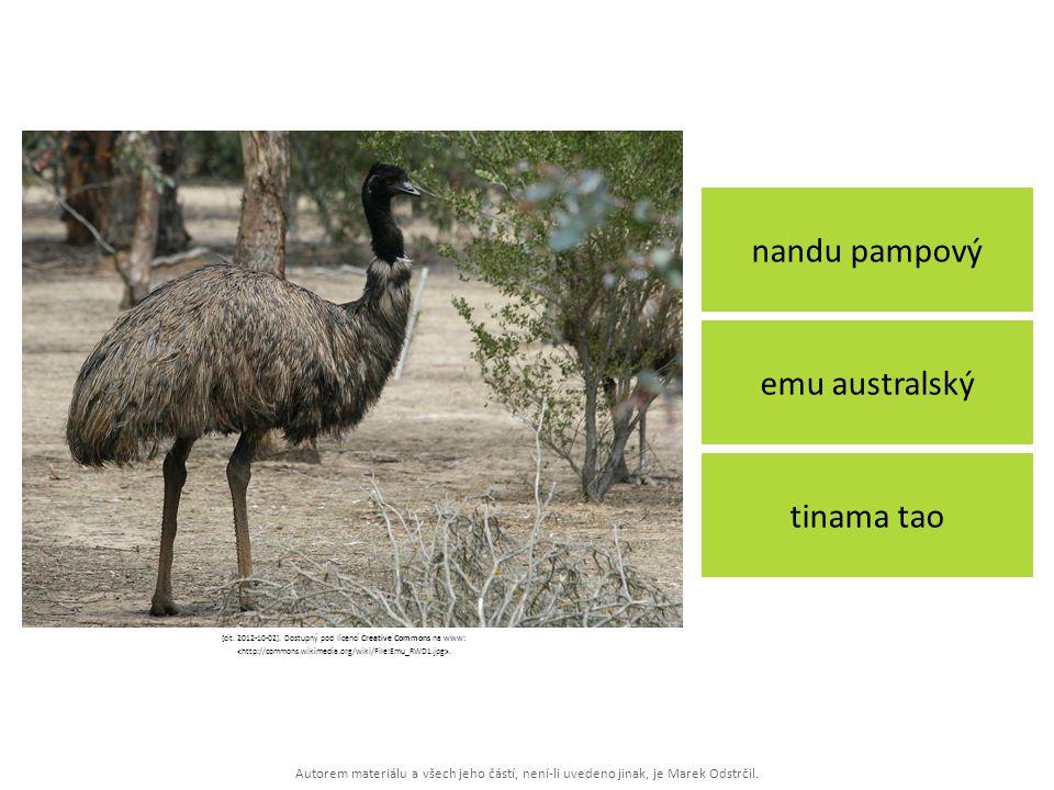 Autorem materiálu a všech jeho částí, není-li uvedeno jinak, je Marek Odstrčil. nandu pampový tinama tao emu australský [cit. 2012-10-02]. Dostupný po