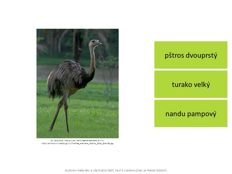 Autorem materiálu a všech jeho částí, není-li uvedeno jinak, je Marek Odstrčil. pštros dvouprstý nandu pampový turako velký [cit. 2012-10-02]. Dostupn