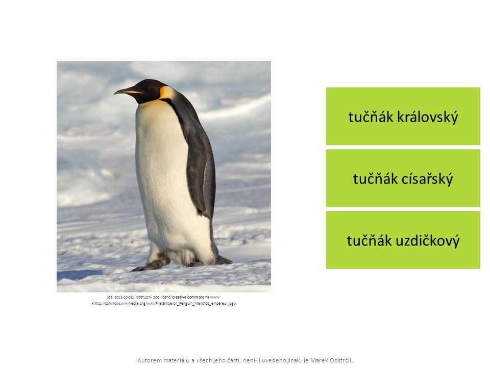 Autorem materiálu a všech jeho částí, není-li uvedeno jinak, je Marek Odstrčil. tučňák královský tučňák uzdičkový tučňák císařský [cit. 2012-10-02]. D
