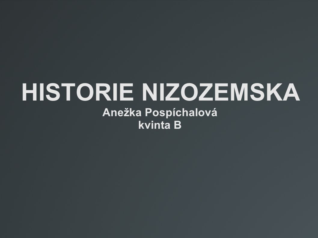 HISTORIE NIZOZEMSKA Anežka Pospíchalová kvinta B