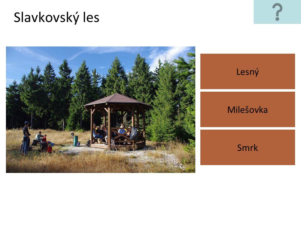 Slavkovský les Lesný Smrk Milešovka