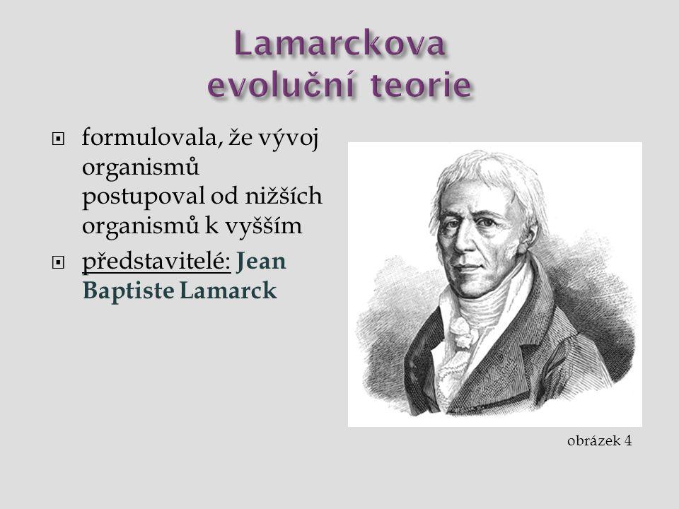  formulovala, že vývoj organismů postupoval od nižších organismů k vyšším  představitelé: Jean Baptiste Lamarck obrázek 4