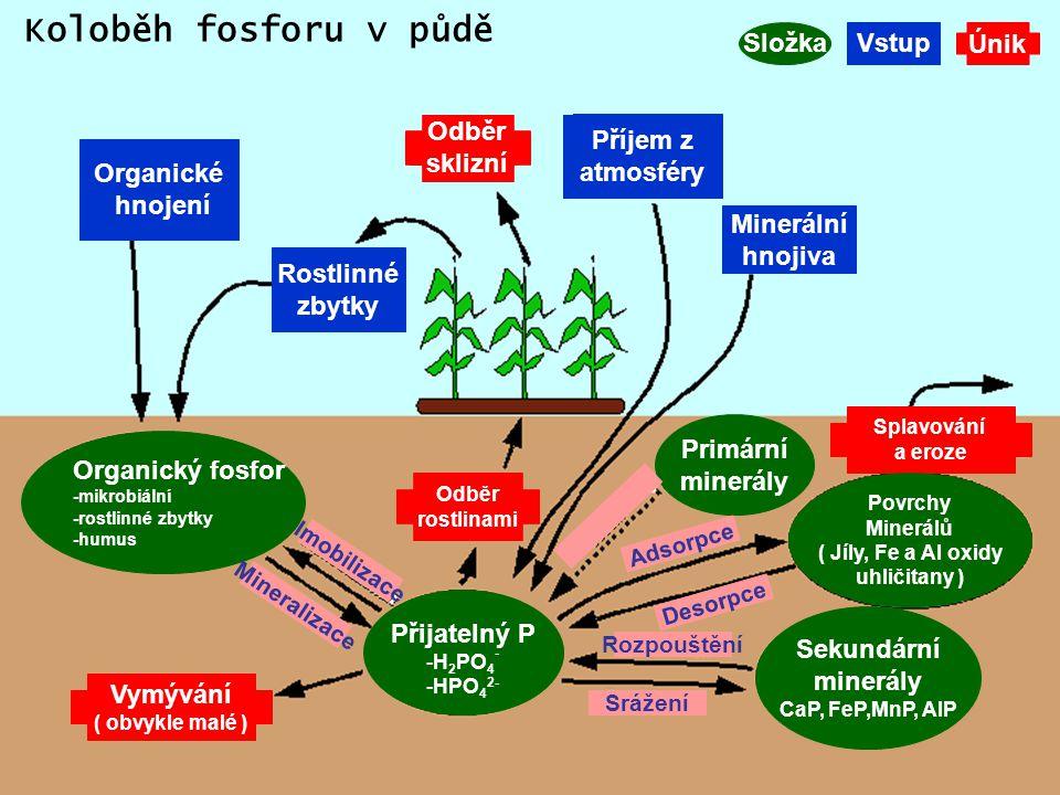Organické hnojení Příjem z atmosféry Minerální hnojiva Rostlinné zbytky Organický fosfor -mikrobiální -rostlinné zbytky -humus Přijatelný P -H 2 PO 4 - -HPO 4 2- Odběr sklizní Primární minerály Sekundární minerály CaP, FeP,MnP, AlP Vymývání ( obvykle malé ) SložkaVstupÚnik Splavování a eroze Odběr rostlinami Imobilizace Mineralizace Srážení Rozpouštění Desorpce Adsorpce Povrchy Minerálů ( Jíly, Fe a Al oxidy uhličitany ) Koloběh fosforu v půdě
