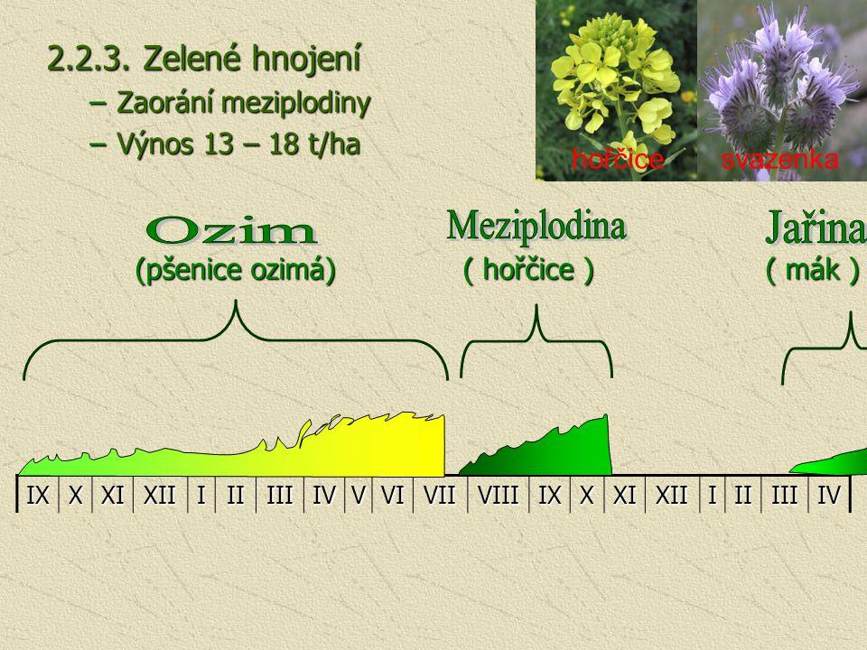 2.2.3. Zelené hnojení –Zaorání meziplodiny –Výnos 13 – 18 t/ha (pšenice ozimá) ( hořčice ) ( mák ) (pšenice ozimá) ( hořčice ) ( mák )IXXXIXIIIIIIIIIV
