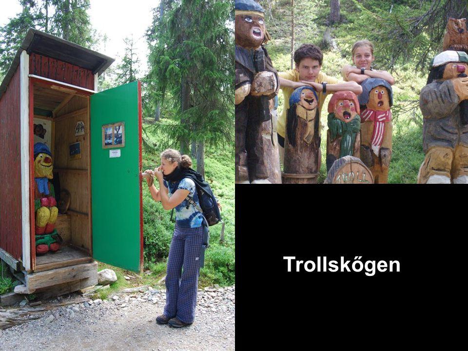 Trollskőgen