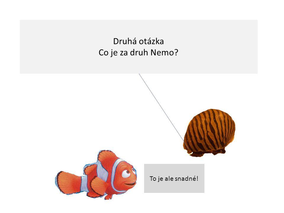 Druhá otázka Co je za druh Nemo? To je ale snadné!