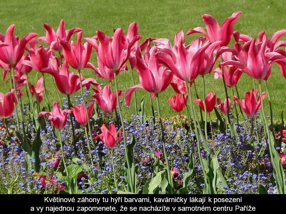 Lucemburská zahrada je nejoblíbenější pařížský park - zelený ráj Paříže.