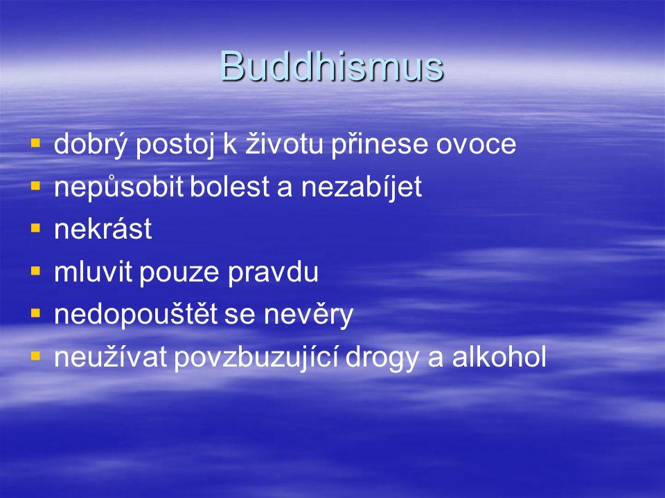 Buddhismus   dobrý postoj k životu přinese ovoce   nepůsobit bolest a nezabíjet   nekrást   mluvit pouze pravdu   nedopouštět se nevěry  