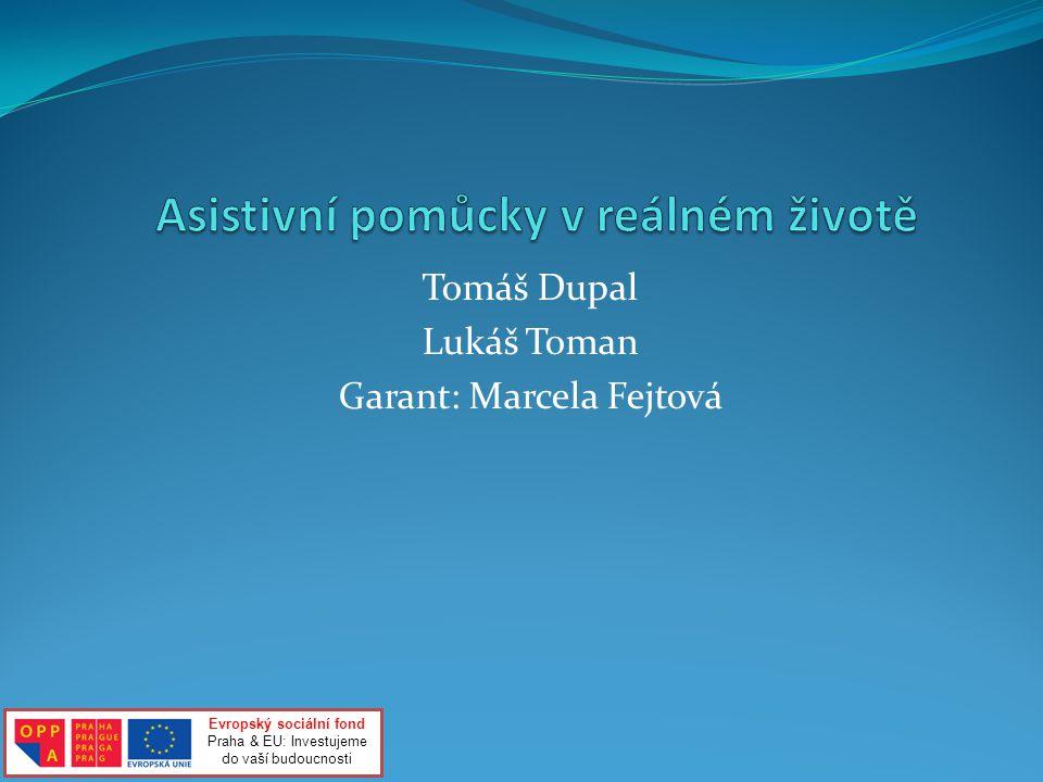 Tomáš Dupal Lukáš Toman Garant: Marcela Fejtová Evropský sociální fond Praha & EU: Investujeme do vaší budoucnosti