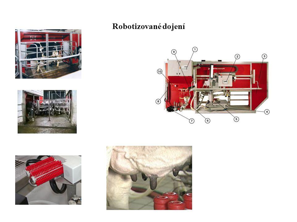 Robotizované dojení