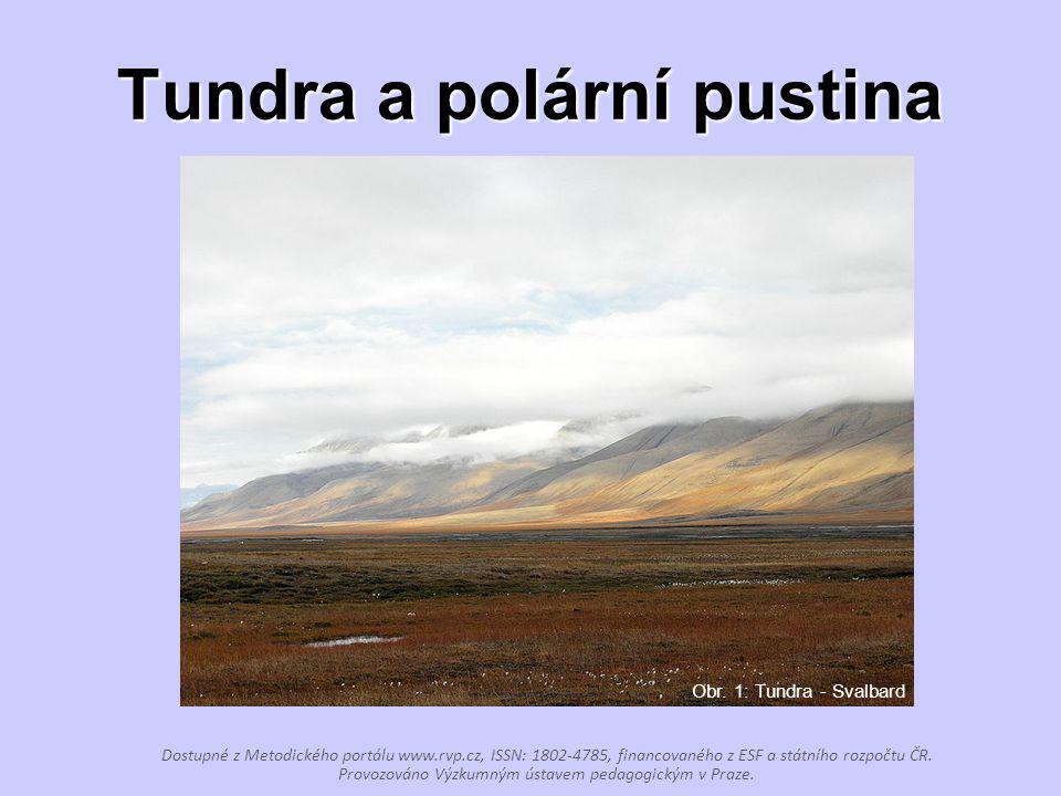 Tundra a polární pustina Dostupné z Metodického portálu www.rvp.cz, ISSN: 1802-4785, financovaného z ESF a státního rozpočtu ČR. Provozováno Výzkumným
