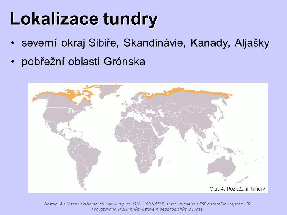 Lokalizace tundry severní okraj Sibiře, Skandinávie, Kanady, Aljašky pobřežní oblasti Grónska Obr. 4: Rozložení tundry Dostupné z Metodického portálu