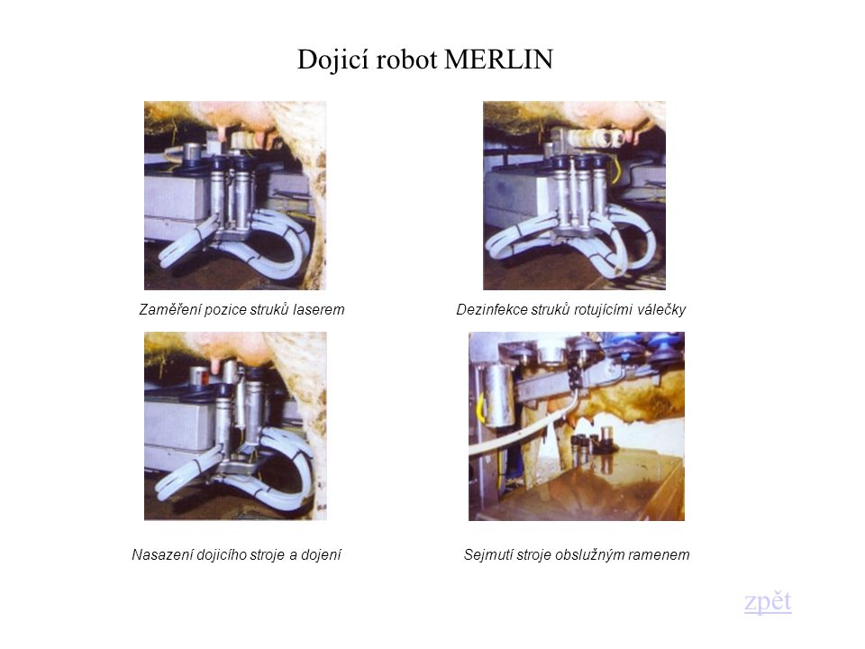 Zaměření pozice struků laseremDezinfekce struků rotujícími válečky Nasazení dojicího stroje a dojeníSejmutí stroje obslužným ramenem Dojicí robot MERL