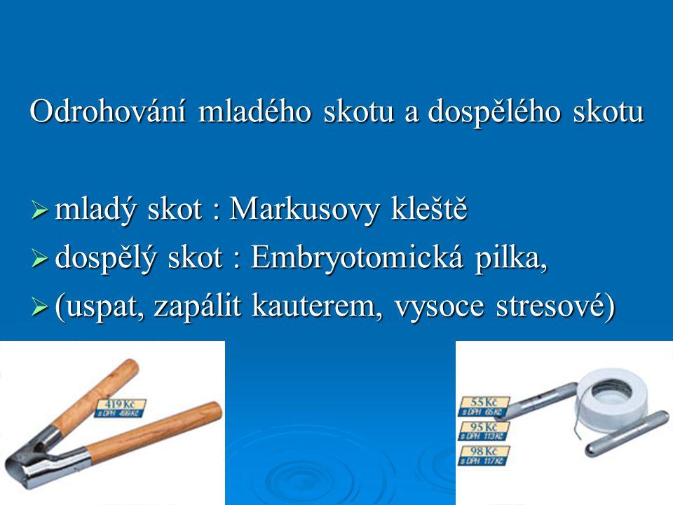 Odrohování mladého skotu a dospělého skotu  mladý skot : Markusovy kleště  dospělý skot : Embryotomická pilka,  (uspat, zapálit kauterem, vysoce st