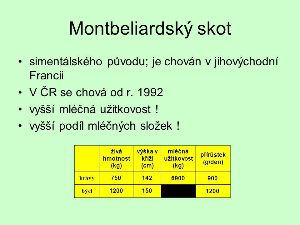 Montbeliardský skot simentálského původu; je chován v jihovýchodní Francii V ČR se chová od r. 1992 vyšší mléčná užitkovost ! vyšší podíl mléčných slo