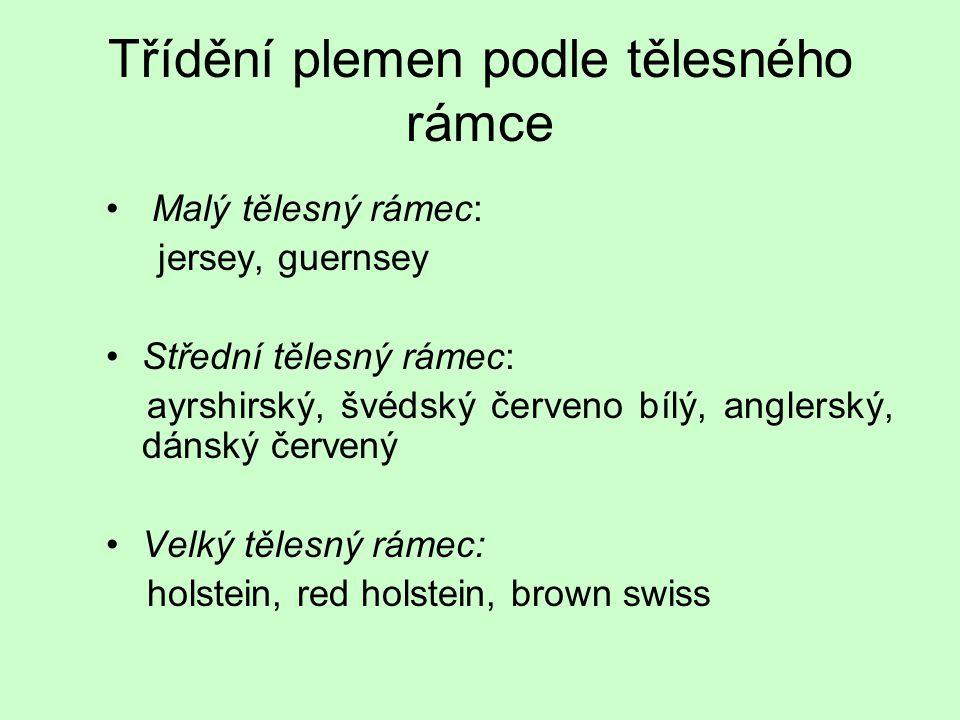 Třídění plemen podle tělesného rámce Malý tělesný rámec: jersey, guernsey Střední tělesný rámec: ayrshirský, švédský červeno bílý, anglerský, dánský č